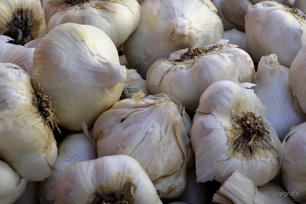 Garlic in the Raw by vipgrafx