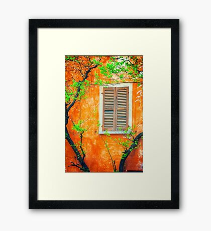 Window with tree branches Framed Print