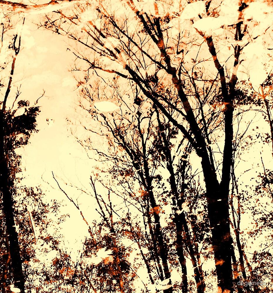 autumn reflection by degamelin