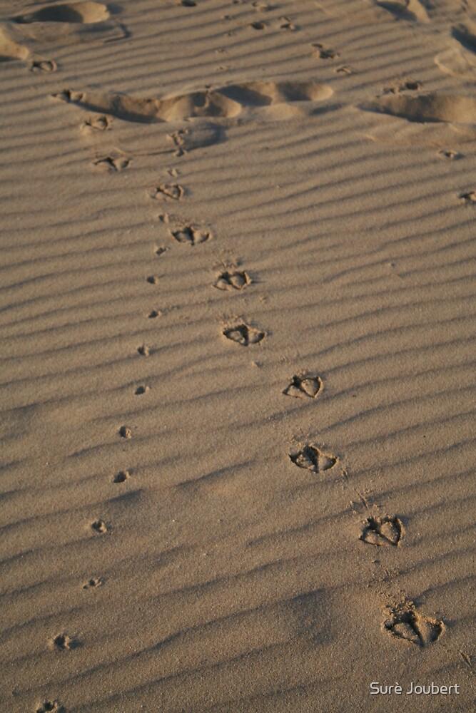 Prints in the sand by Surè Joubert
