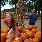 Pumpkin Patch by Elizabeth Burton