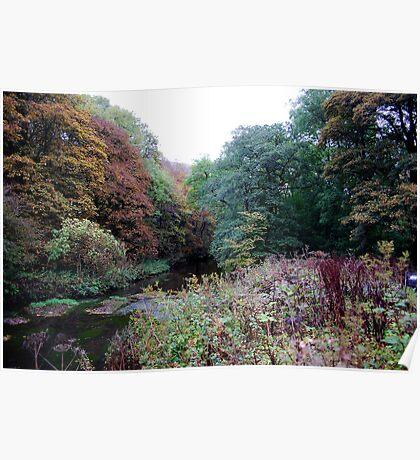 Autumn river Poster