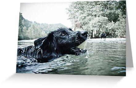 Swimming with my furry friend by Karen Havenaar