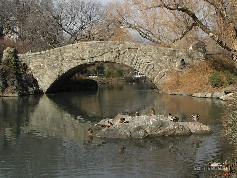 Central Park NYC by sunrisedetail