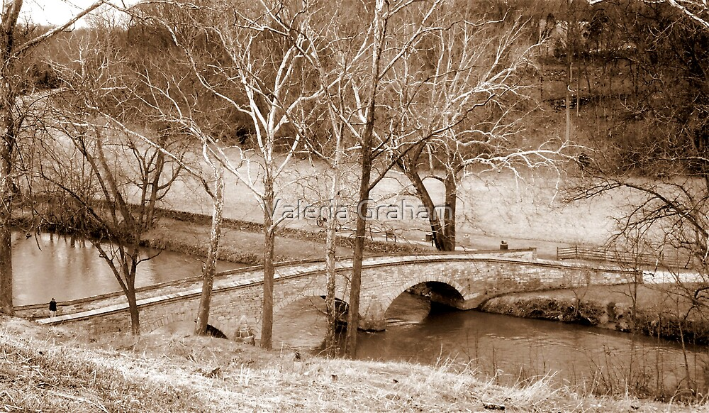 Bridge by Valeria Lee