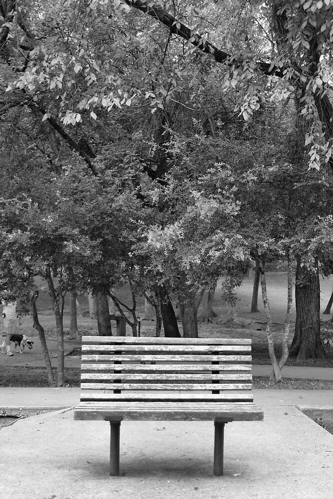 Park Bench by whircat