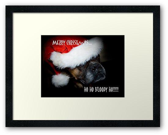 Ho Ho Bloody Ho!!!! by Sue Wilson (Kane)