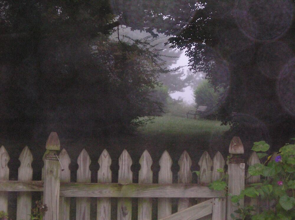 Mist, reflected by adrianmole