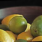 Mahogany Bowl of Lemons and Limes by Sherry Hallemeier