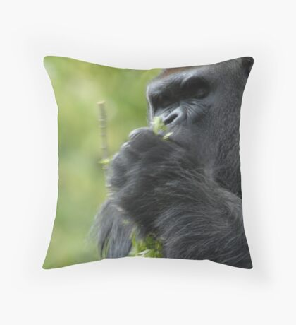 Consummate Throw Pillow
