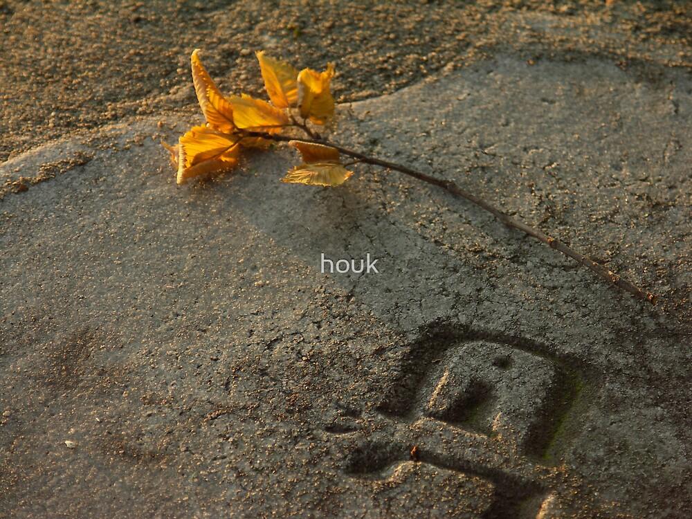 Leaf by houk