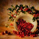 Christmassy still life by nitrams