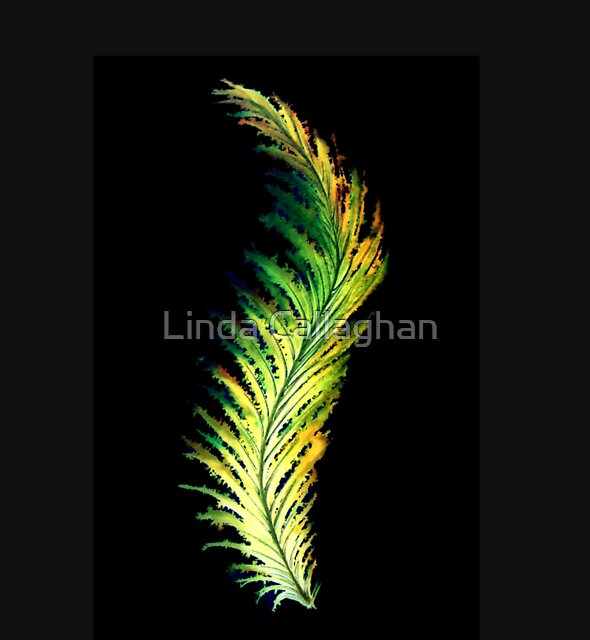 Feather - Green by Linda Callaghan
