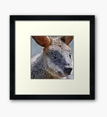 cuddly cute Framed Print