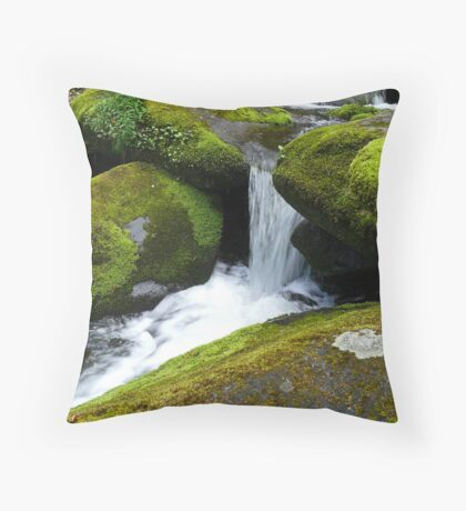 Gushing Throw Pillow