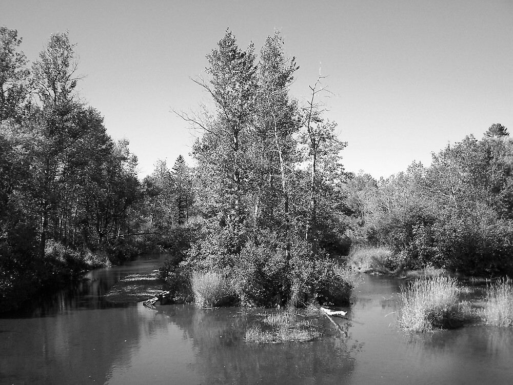 Stream Island by Gene Cyr