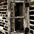 The Window by Robert Ibelings