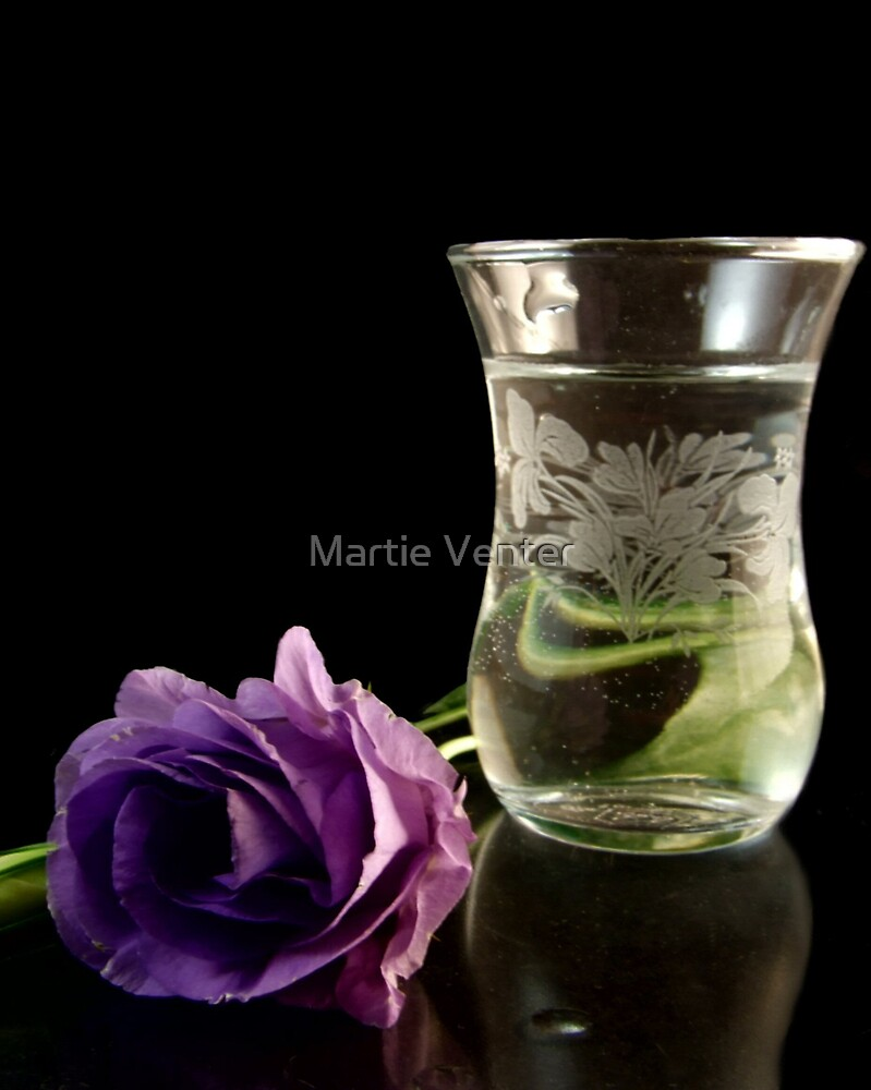 Lisianthus Reflections by Martie Venter