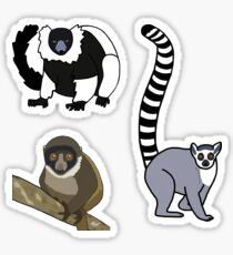 Lemurs - Mini Sticker Pack Sticker
