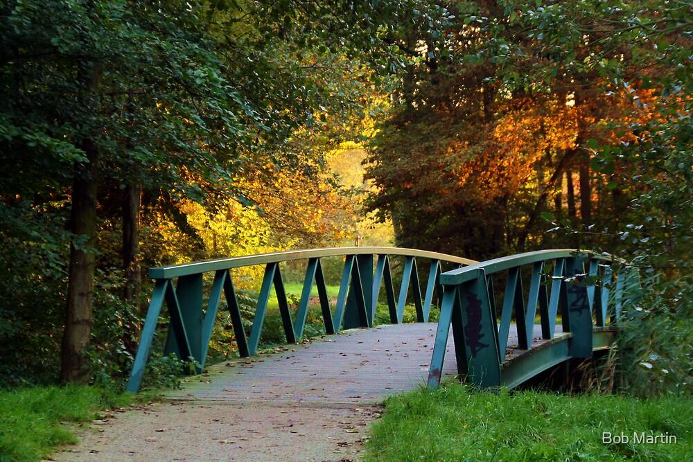 Autumn brigde by Bob Martin
