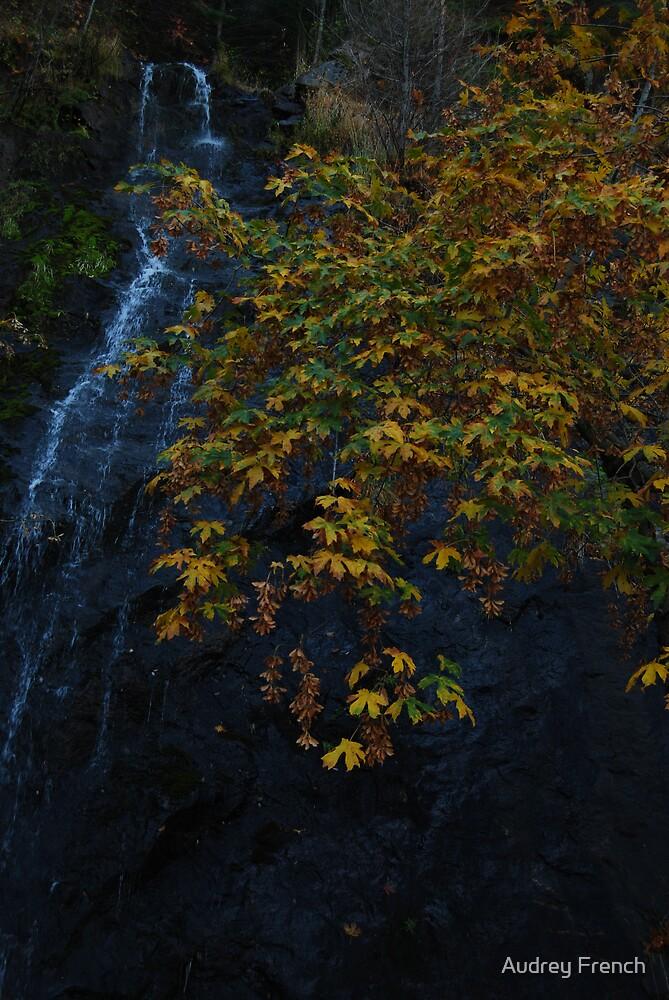 Bridalveil Falls  by Audrey French