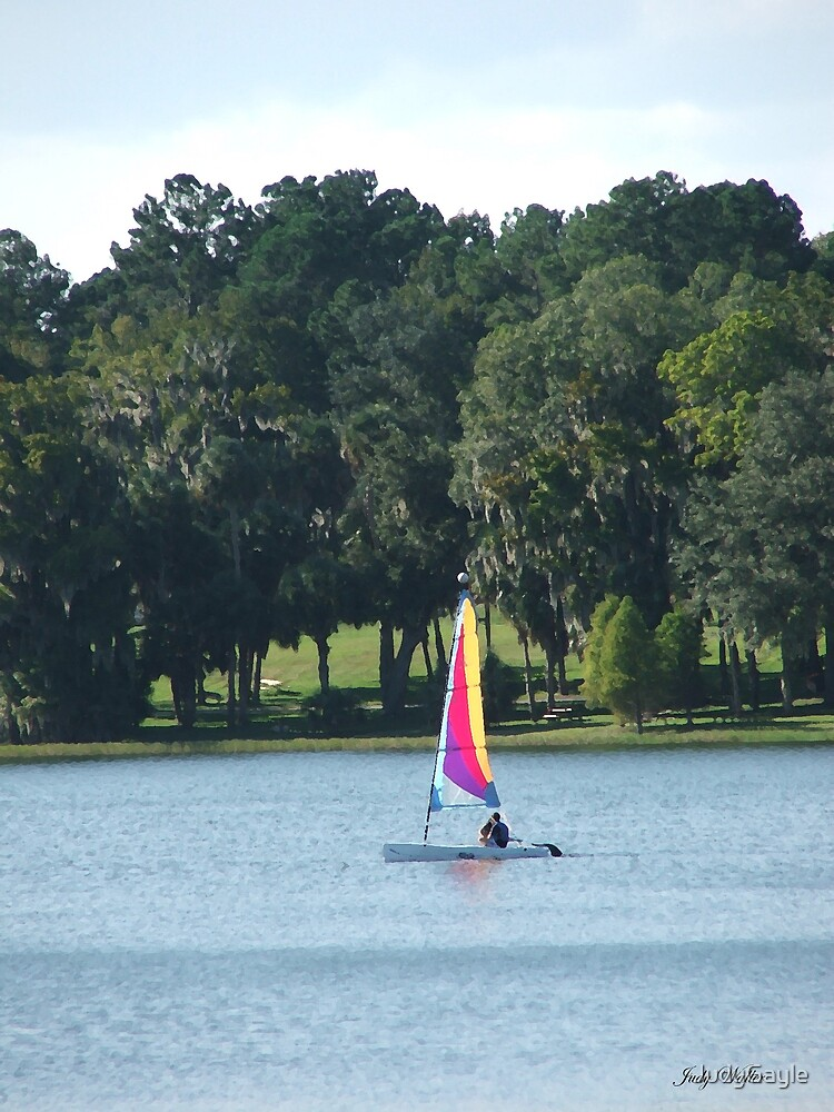 Sailing on the Lake by Judy Gayle Waller