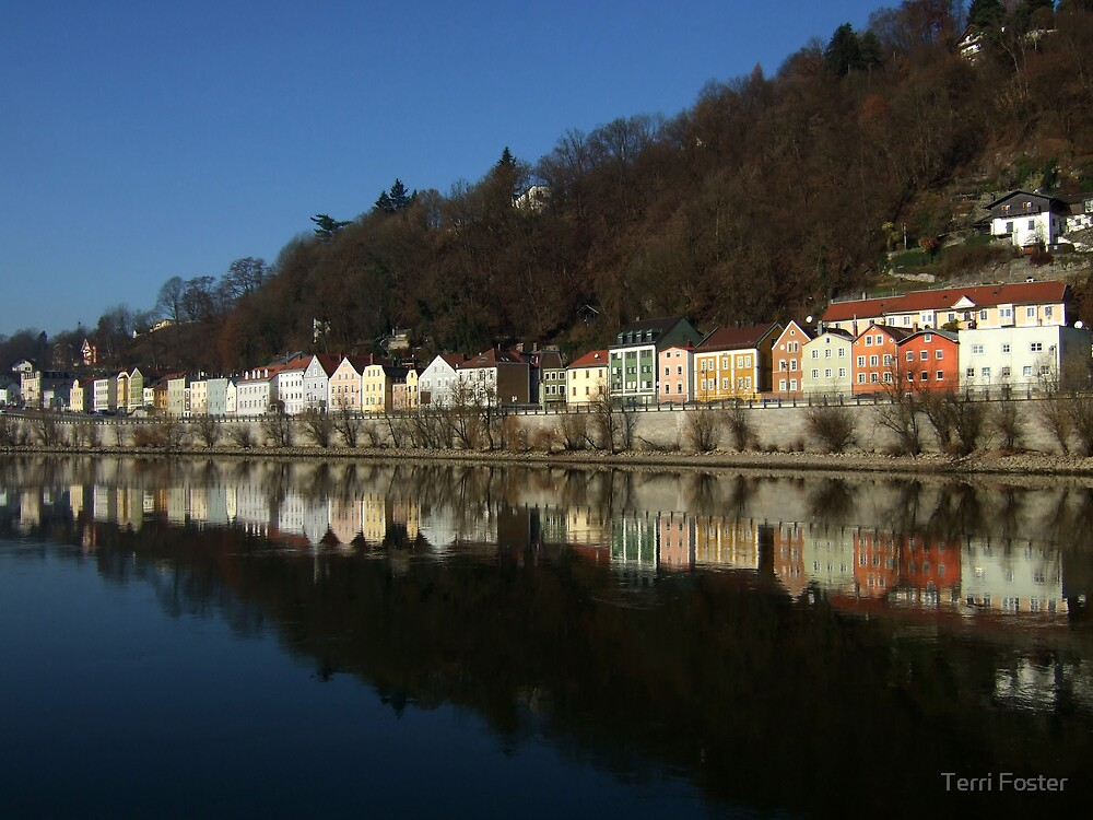 Danube River near Passau by Terri Foster