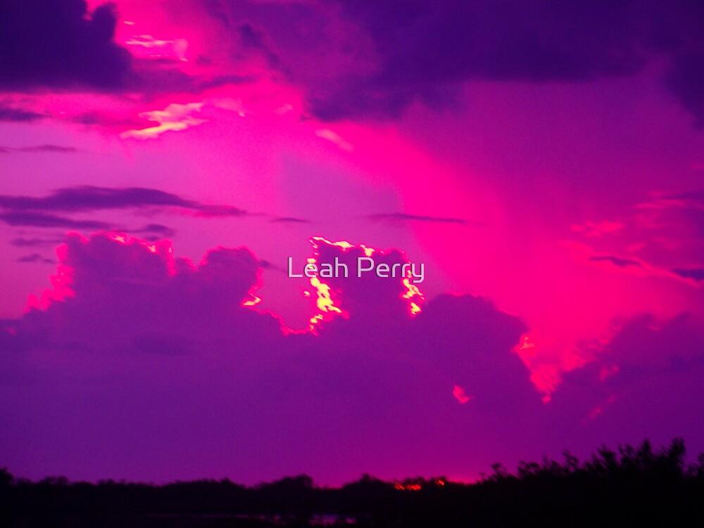 Purple Haze by Leah Perry