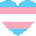 Transgender Triumph  by rayshippou