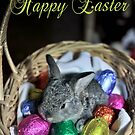 Happy Easter  by Maree Toogood