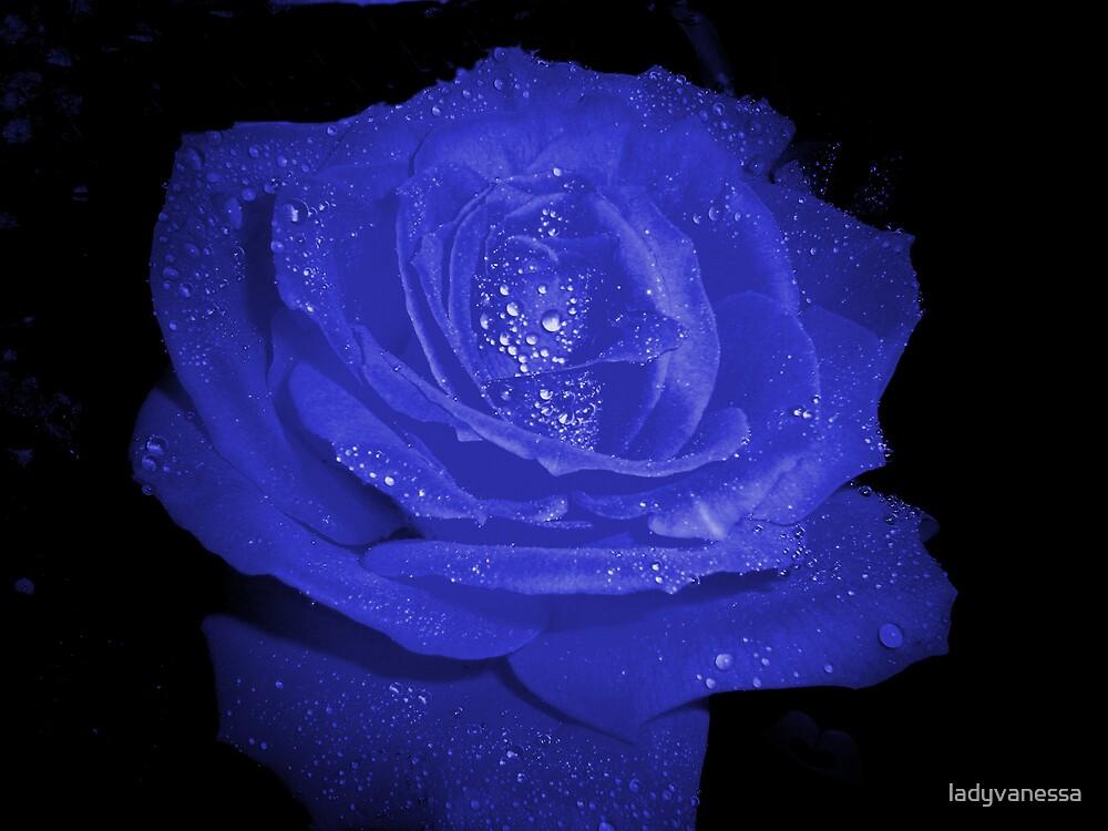 Cobalt by ladyvanessa