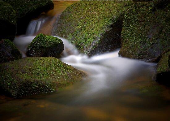 Serenity by Andrew Bosman