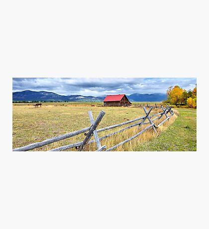 Montana Country Life Photographic Print