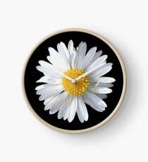 New Daisy Clock