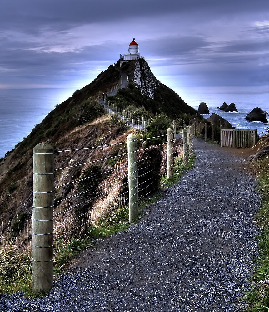 Nugget Point Lighthouse by David James