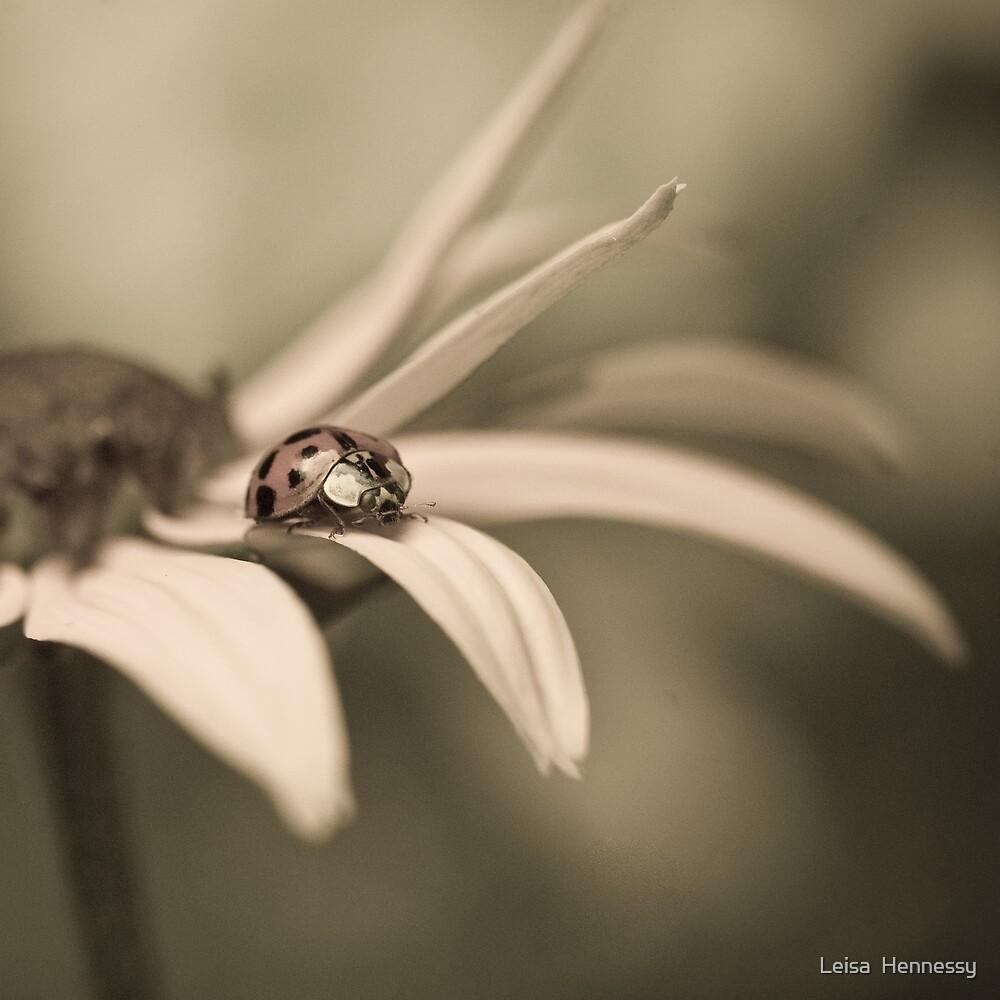 LadyBug  III by Leisa  Hennessy