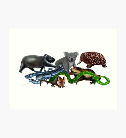 Australian animals collage Art Print