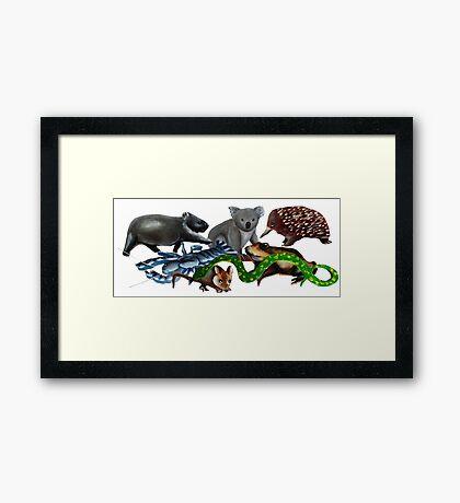 Australian animals collage Framed Print