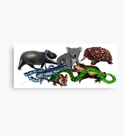 Australian animals collage Canvas Print