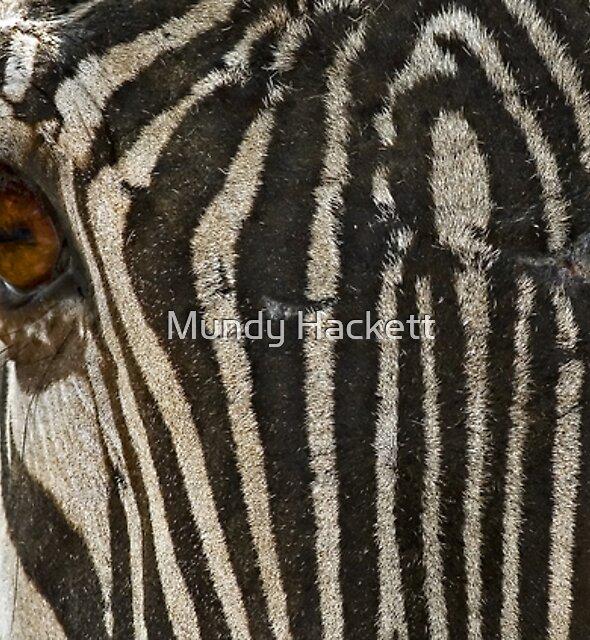 Stripes by Mundy Hackett