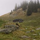 Mountain sheepfold by ictin