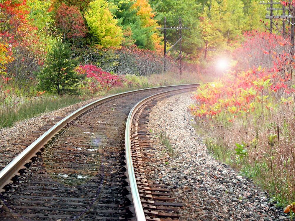 Oncoming Train by nikspix