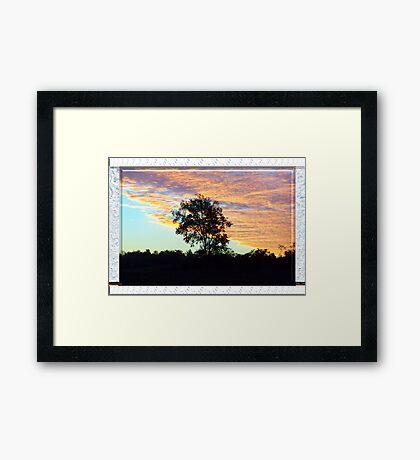Blaze on Blue Framed Print