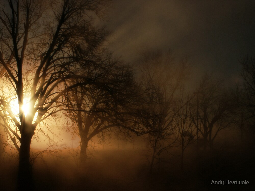 Foggy Sunrise by Andy Heatwole