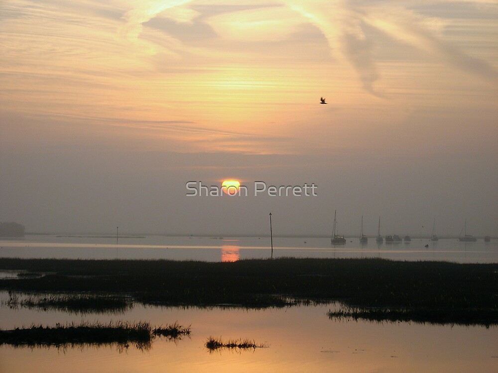 Sunrise 4-10-07 by Sharon Perrett