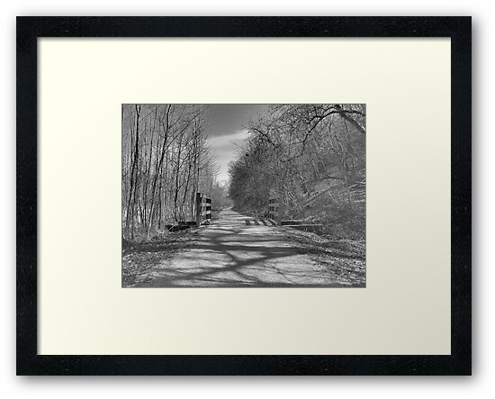Trail of Shadows by toots