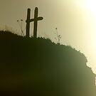 Crosses In the Mist by Trace Lowe