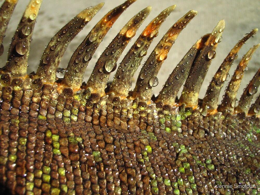Lizard Leather by Jennie Smolow