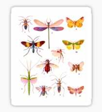 Charming and colourful bugs Sticker