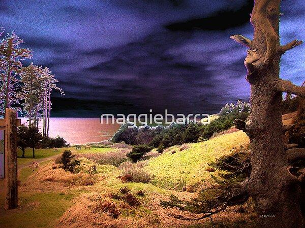 Dreamscape by maggiebarra